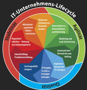 IT-Unternehmens-life-cycle